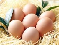 egg_img1
